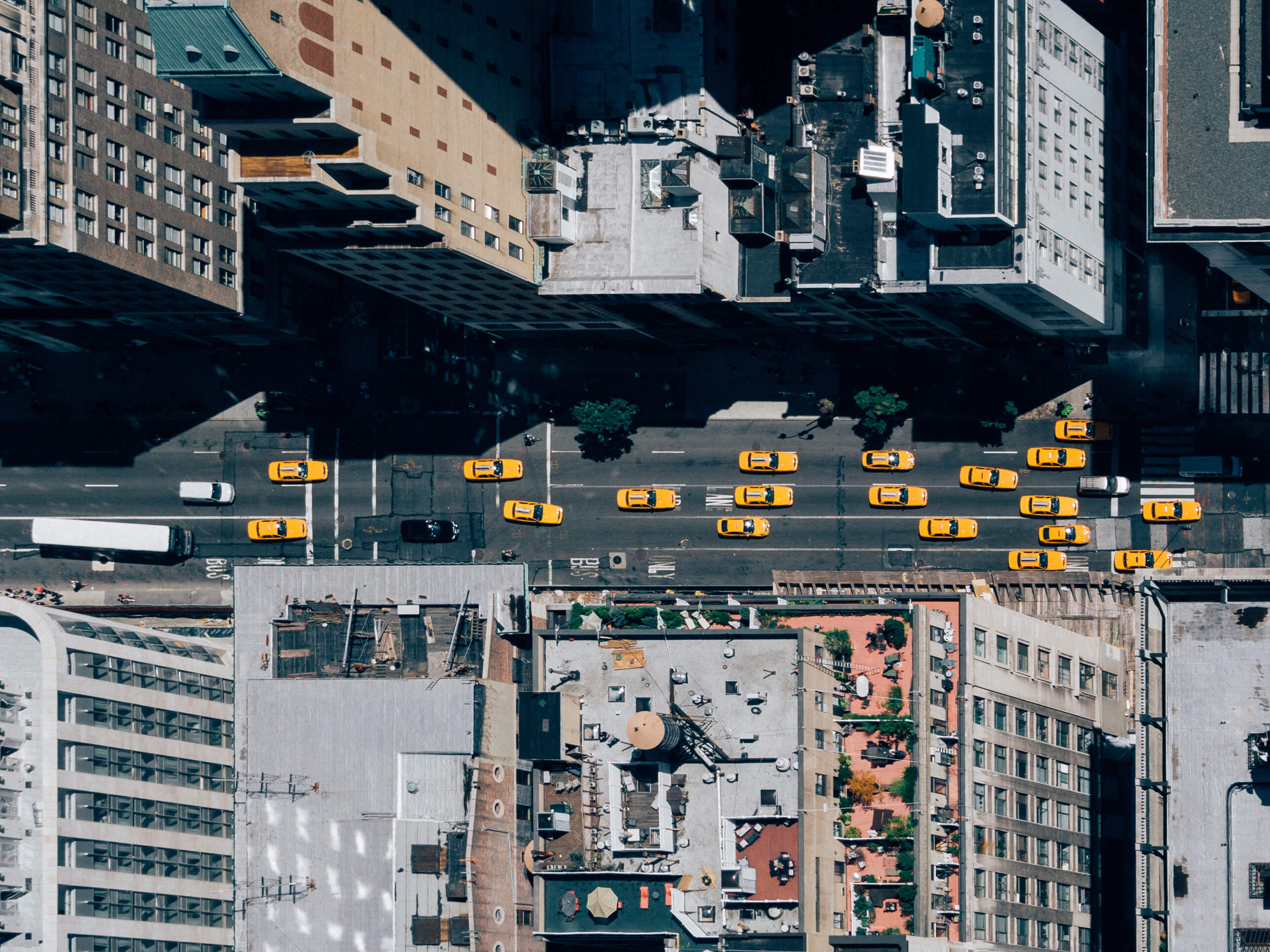 Top-down view of taxi cabs on city street